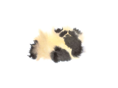 THEWRONGSHOP - Rop van Mierlo Animals Panda, 2020