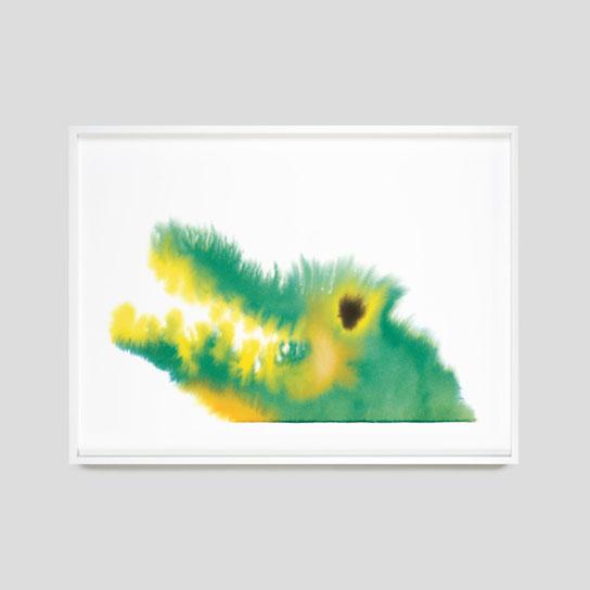 THEWRONGSHOP - Rop van Mierlo Animals Crocodile, 2020 ingelijst